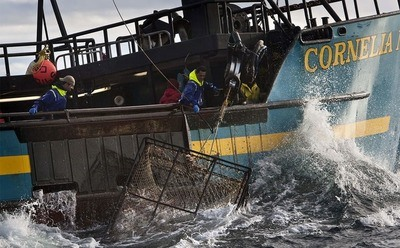 /trending/what-really-happens-when-the-cameras-stop-rolling-on-deadliest-catch/img/DeadliestCatch02_MobileImageSizeReigNN.jpg
