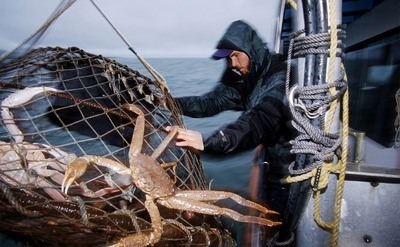 /trending/what-really-happens-when-the-cameras-stop-rolling-on-deadliest-catch/img/DeadliestCatch14_MobileImageSizeReigNN.jpg